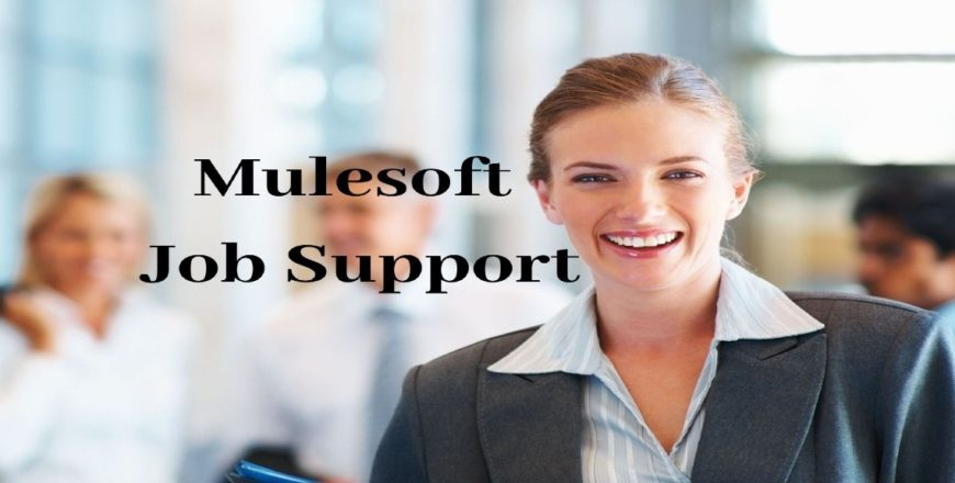 Mulesoft Job Support