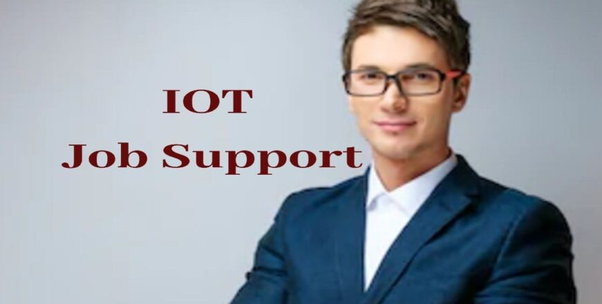 IOT Job Support