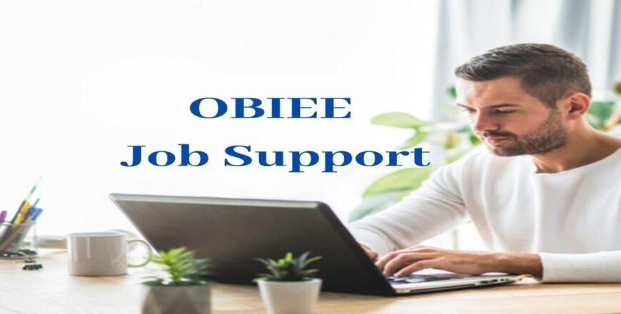 OBIEE Job Support