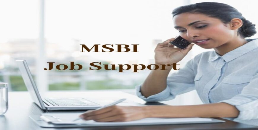 MSBI Job Support