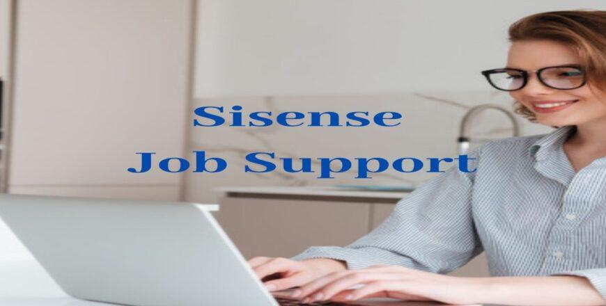 Sisense Job Support