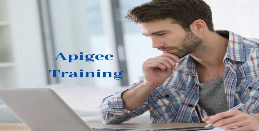 Apigee Training