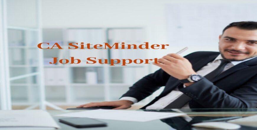 CA SiteMinder Job Support