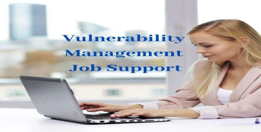 Vulnerability Management Job Support