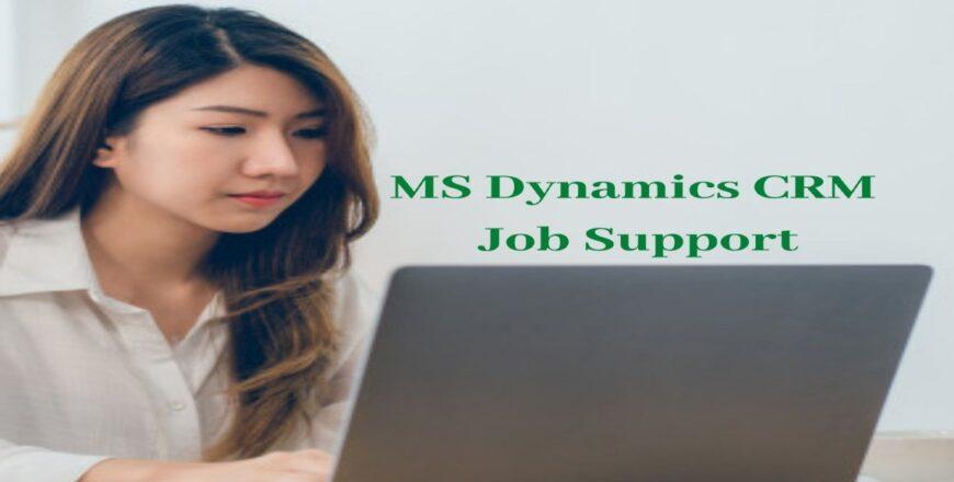 MS Dynamics CRM Job Support