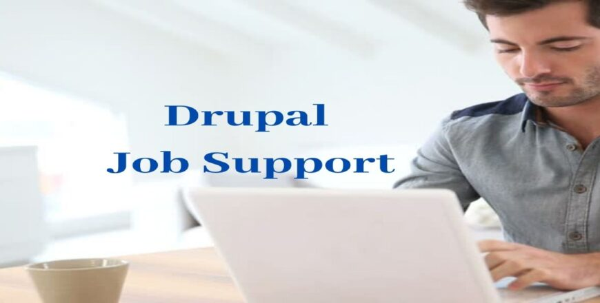 Drupal Job Support