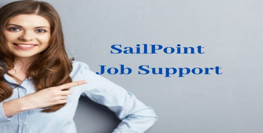 SailPoint Job Support