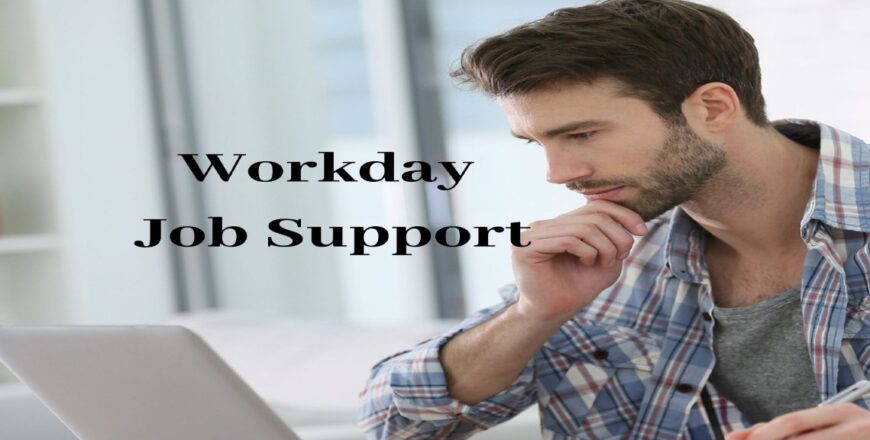 Workday Job Support